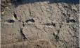 Novo conjunto com 14 pegadas foi descoberto no sítio arqueológico de Laetoli, na Tanzânia