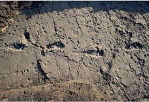 Novo conjunto com 14 pegadas foi descoberto no sítio arqueológico de Laetoli, na Tanzânia Foto: eLIFE