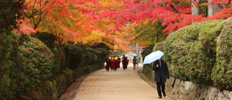 Alameda na cidade de Koyasan, no Monte Koya, ao sul de Osaka Foto: Léa Cristina