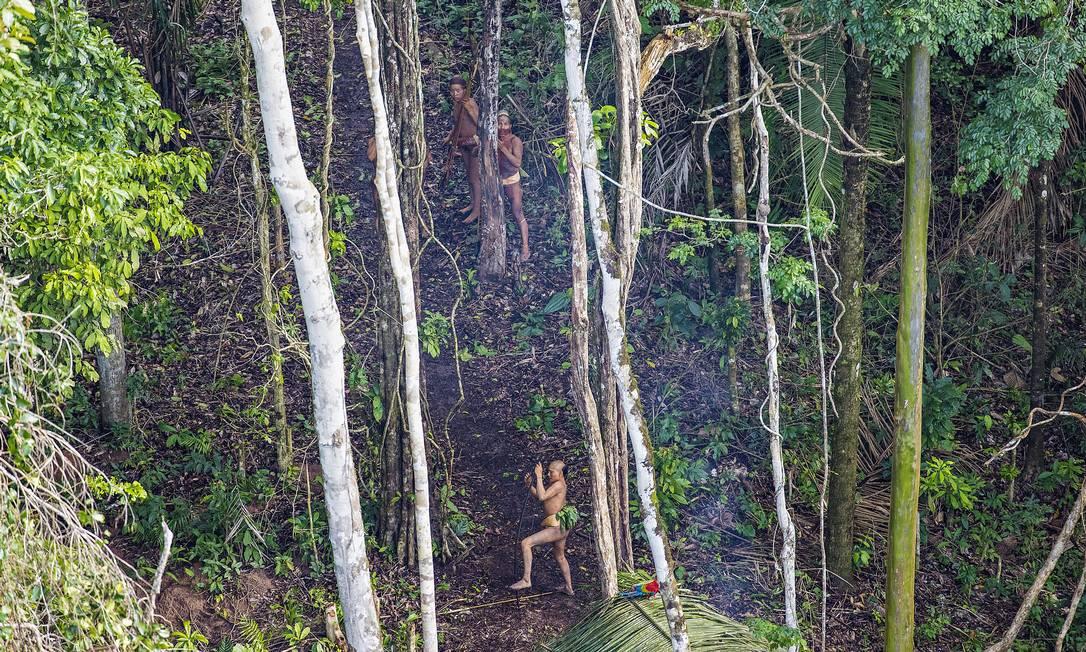 Índios com parte da cabeça raspada são vistos na floresta RICARDO STUCKERT / Agência O Globo