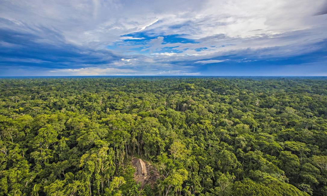 Vista aérea da região em que os índios foram encontrados RICARDO STUCKERT / Agência O Globo