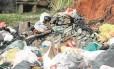 Sujeira por todo lado. Lixo em Petrópolis: cidade iniciou mutirão de limpeza