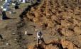 Homem abre covas no cemitério Tarumã, em Manaus, após a morte de 56 detentos durante rebelião