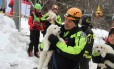 Bombeiros levam cachorros encontrados vivos em hotel soterrado Foto: HANDOUT / REUTERS