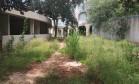 Abandono. O campus da Uenf tomado pelo matagal: o ano letivo corre o risco de não começar na data prevista Foto: Marcos Pedlowski / Divulgação