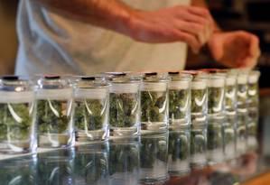 Potinhos exibem diversos tipos de brotos de cannabis em um dispensário de maconha medicinal em Los Angeles Foto: Mario Anzuoni / Reuters