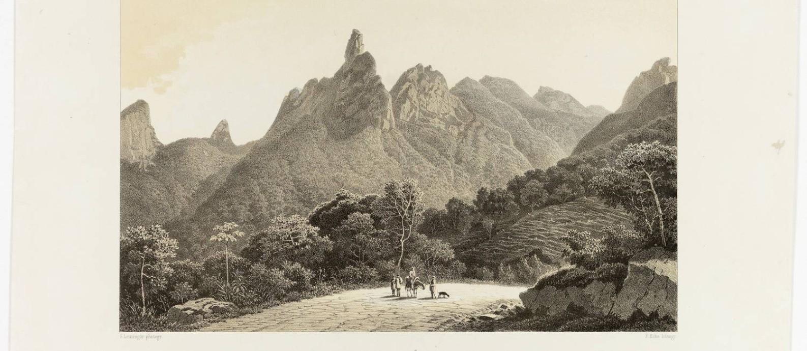 Litografia de Von Martius mostra floresta que sombreia as encostas das montanhas da Serra dos Órgãos, no Rio de Janeiro Foto: Divulgação