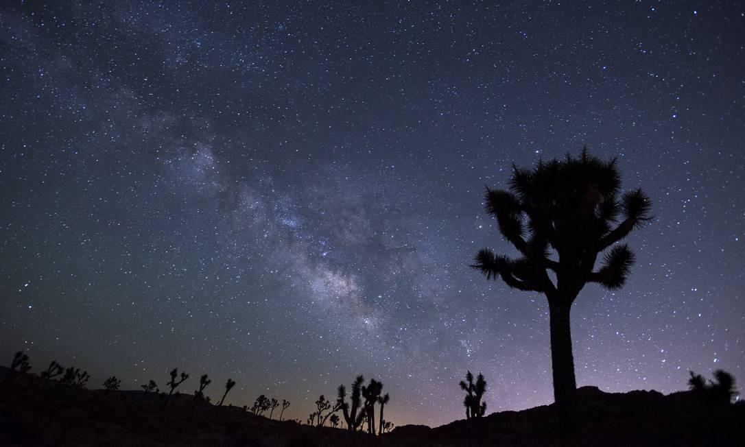 No Joshua Tree National Park, na Califórnia, guardas florestais atuam também como guias de tours astronômicos noturnos Foto: Visit California / Divulgação