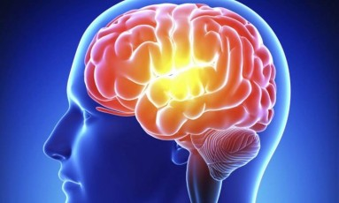 Ilustração do cérebro humano Foto: Reprodução