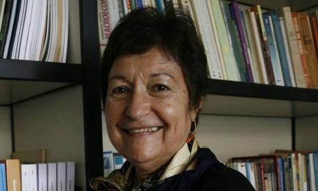 Professora Hildete Pereira de Melo. Faculdade de Economia Campus de Gragoata (Foto: Luiz Morier / Agência O Globo)