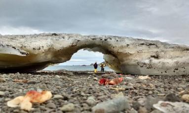 Pesquisadores brasileiros exploram a Baía Fildes, na Antártica, local de coleta de solo e gelo Foto: Divulgação/Carolina Alves Fernandes