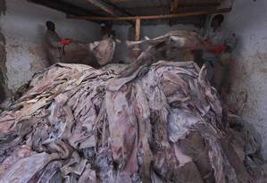 Funcionários de um abatedouro legalizado no Quênia especializado em burros Foto: TONY KARUMBA / AFP