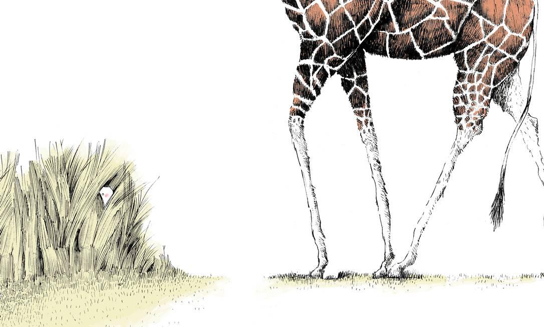 """ALTURAS. Ilustração do livro """"Escondida"""" (2017) Foto: Jean-Claude Alphen / Reprodução"""