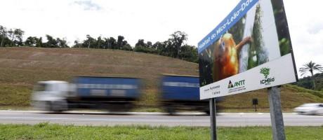 Alerta na pista. Painel instalado em trecho da BR-101 Norte informa que o local é habitat do mico-leão-dourado: rodovia está em obras Foto: Pablo Jacob