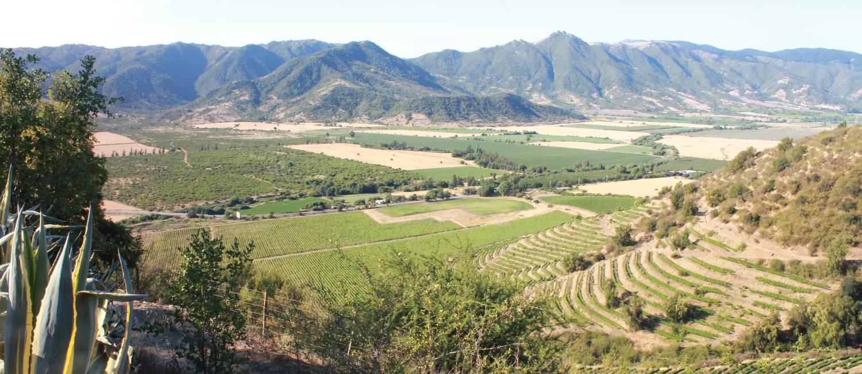 Paisagem rural: cenário no topo do Cerro Charmán, na vinícola Santa Cruz Foto: Ana Beatriz Marin / Extra