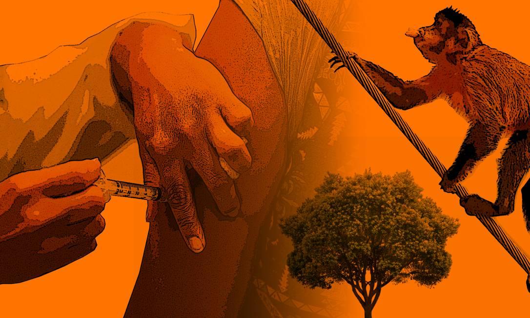 Fotomontagem Foto: O Globo