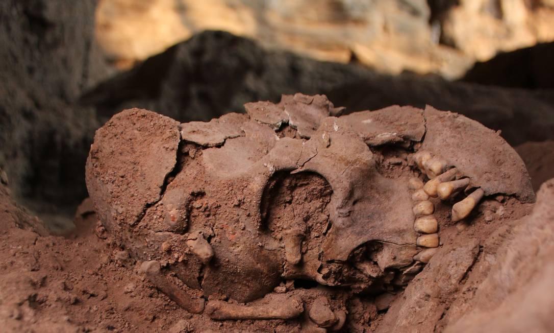 Crânio ainda no sítio arqueológico de Lapa do Santo Foto: André Strauss