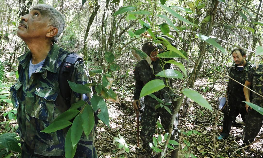 Agentes da Guarda Ambiental de Casimiro de Abreu procuram primatas em uma mata próxima ao local onde morava a primeira vítima da febre amarela no Estado do Rio Foto: Antonio Scorza / Agência O Globo