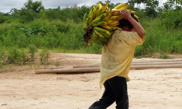 Índios AMAZONAS tem CORAÇÕES + saudaveis 65804588_A-Tsimane-man-carried-bananas-among-a-group-of-indigenous-people-wi.jpg