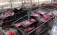 Fiscalização da Vigilância Sanitária em supermercados para avaliar a condição das carnes