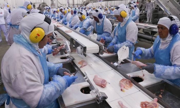Linha de produção da fábrica da processamento de aves (frangos e derivados) da JBS em Lapa, no Paraná, onde há a suspeita de irregularidades na certificação sanitária internacional por parte de auditores fiscais do ministério. Foto: ANDRE COELHO / Agência O Globo