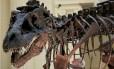 Estudo revoluciona árvore genealógica de dinossauros