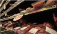 Repercussão da Operação Carne Fraca em supermercados Foto: Arquivo
