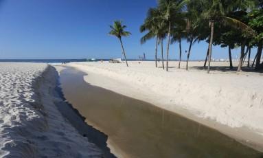 Língua negra na Praia do Leme Foto: Marcia Foletto / Agência O Globo