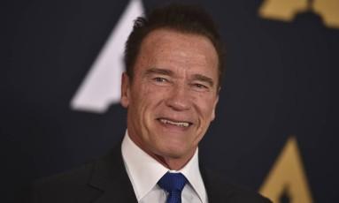 Arnold Schwarzenegger Foto: Jordan Strauss / AP