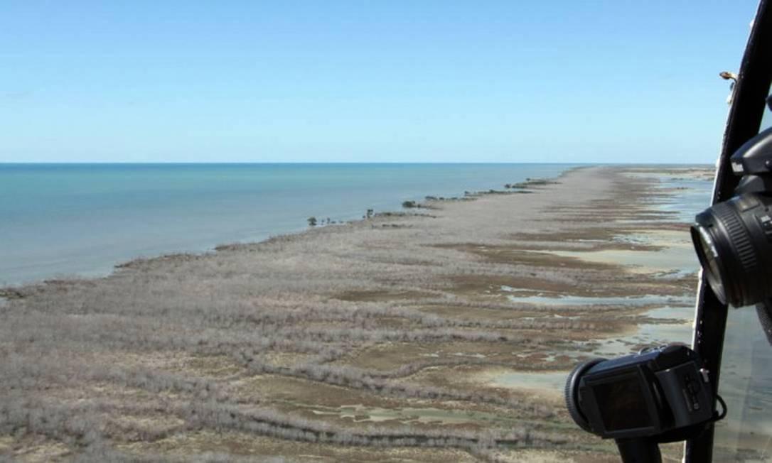"""Manguezal com 7.400 hectares morreu de """"sede"""" no Golfo de Carpentária, na Austrália Foto: AFP / NORMAN DUKE"""
