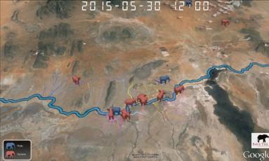 Parceria entre Save The Elephants e Google Earth durou uma década Foto: Reprodução