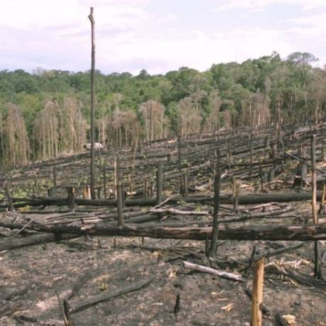Região desmatada na Amazônia: bioma tem ciclos cada vez mais desequilibrados Foto: Arquivo