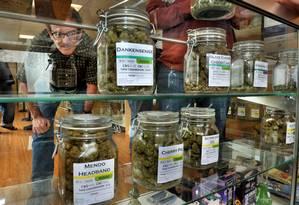 Farmácias serão fiscalizadas pelo governo uruguaio Foto: Bob Pennell / AP