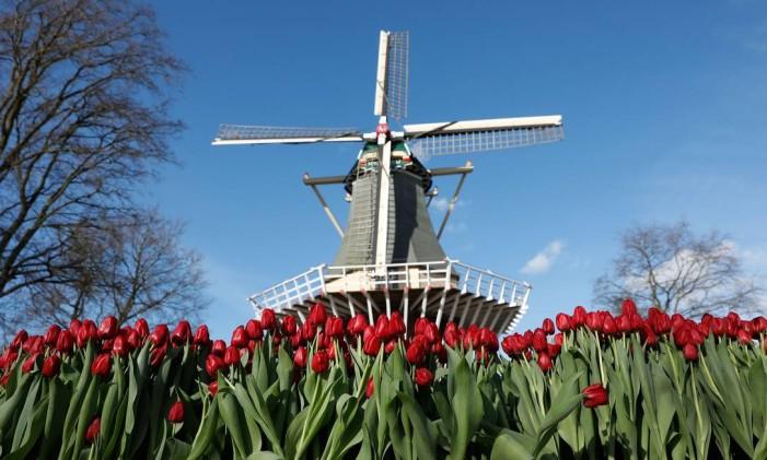 Moinho no parque Keukenhof, na Holanda Foto: Bas Czerwinski / AFP