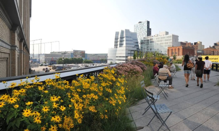 Jardim no High Line, em Nova York Foto: Julienne Schaer / Divulgação