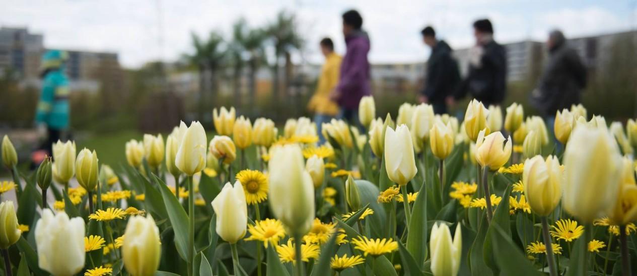 Margaridas e tulipas entre os jardins International Garden Exhibition (IGA) 2017, que fica até 15 de outubro em no Gaerten der Welt em Berlim Foto: STEFFI LOOS / AFP