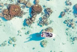 Drone monitora recifes de corais na ilha vulcânica Moorea, na Polinésia Francesa: uma das iniciativas do centro de pesquisa Lamont-Doherty, da Universidade de Columbia Foto: Reprodução/ Lamont-Doherty Earth Observatory/Columbia University