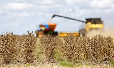 Colheitadeira de soja no oeste da Bahia faz trabalho ininterrupto de oito horas. Produção do grão deve disparar este ano. Foto de Fabio Rossi / Agencia O Globo