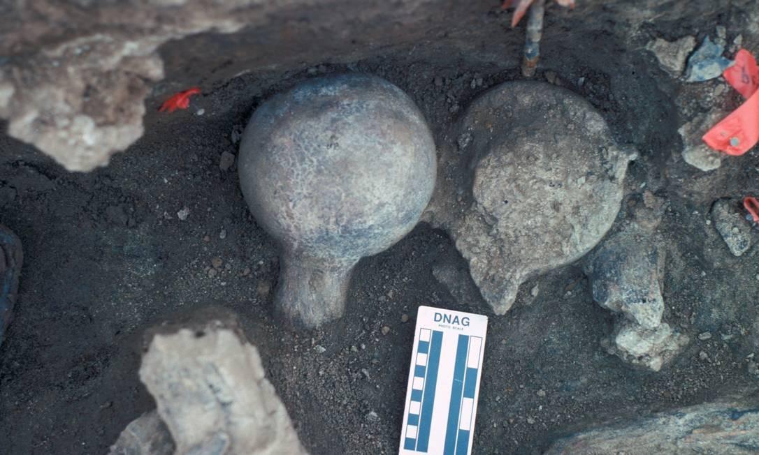 Foto das pontas dos fêmures do fóssil de de 130 mil anos de um mastodonte desencavado na área de San Diego que os cientistas dizem ter marcas de terem sido processados com ferramentas de pedra por uma espécie humana arcaica para obtenção de seu nutritivo tutano Foto: San Diego Natural History Museum