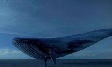 """Jogo da """"Baleia Azul"""" pode ser investigado pela Polícia Federal Foto: Divulgação"""