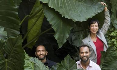 Gustavo Leivas e os irmãos Julio e Isabela Ono, entre os filodendros do BNDES Foto: Ana Branco / Agência O Globo