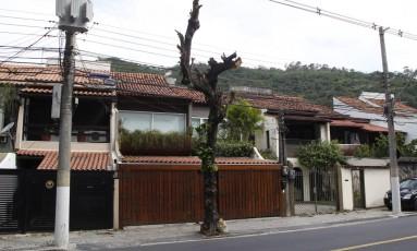 Árvore na Avenida Rui Barbosa teve toda a copa retirada após poda Foto: Eduardo Naddar