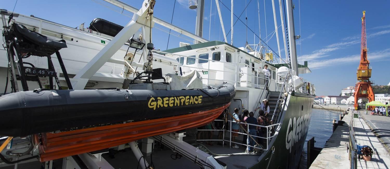 Ancorado no Pier Mauá, a terceira versão do navio ambientalista que desafia autoridades pelo mundo marca os 25 anos da ONG no Brasil Foto: Fernando Lemos / Agência O Globo