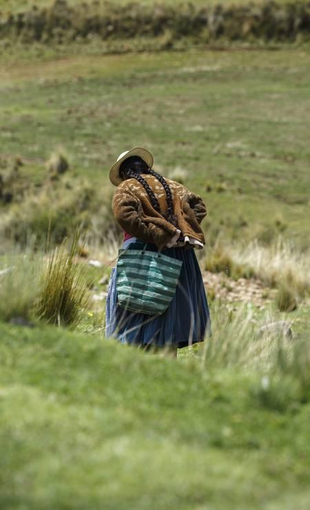 E quando não estão lidando com ovelhas ou lhamas, estão trabalhando no campo Foto: Daniel Marenco / Agência O Globo