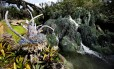 """Pandora, área inpisrada em """"Avatar"""" no parque Animal Kingdom será oficialmente aberto para o público no dia 27 de maio"""