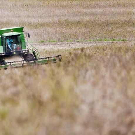 Colheita de soja numa plantação no Paraná: Brasil é um dos países que mais usam organismos geneticamente modificados Foto: Guito Moreto