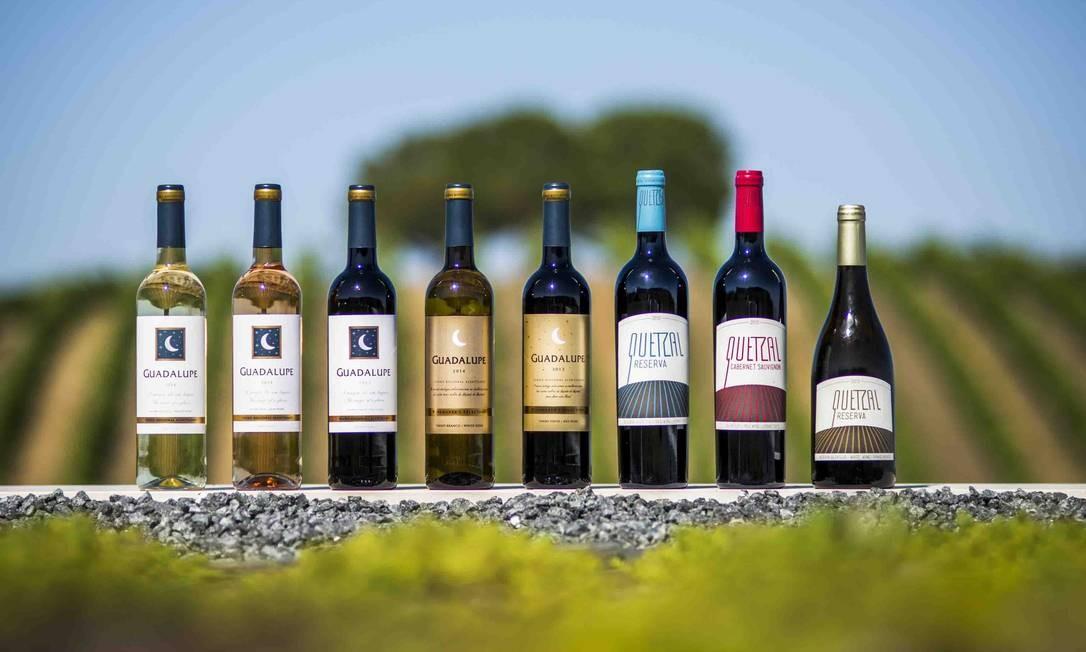 Variedade de vinhos da Quinta do Quetzal Foto: Divulgação