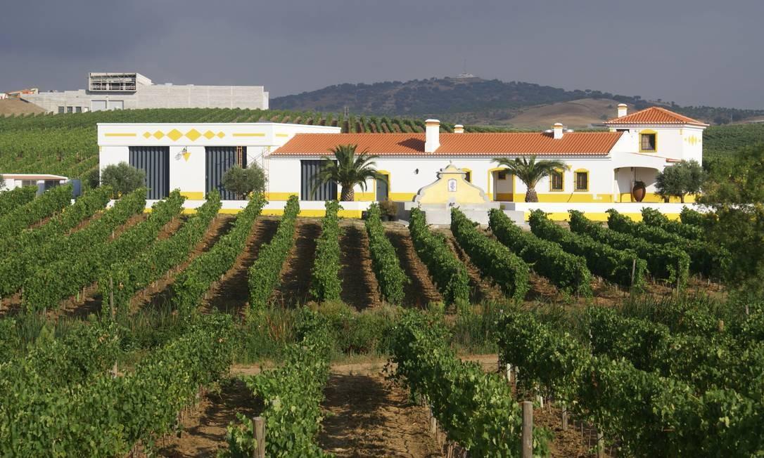 Ambiente bucólico na Ribafreixo Wines Foto: Divulgação