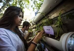 Horta Vertical: alunos da Meimei trabalham no projeto da escola que conta com material reciclável Foto: Guito Moreto / Agência O Globo