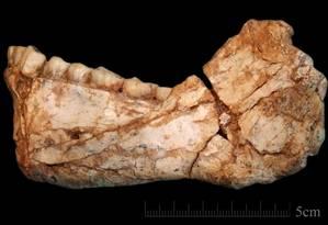 Uma mandíbula de adulto quase completa foi descoberta no Marrocos Foto: Jean-Jacques Hublin/Instituto para Antropologia Evolucionária Max Planck